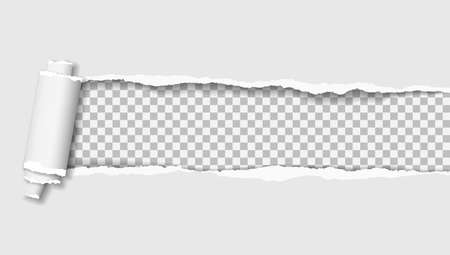Rolled and ripped white notebook paper is on squared background for text. Vector illustration. Ilustrace