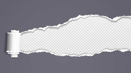 Rolled and ripped dark grey paper is on squared background for text. Vector illustration.