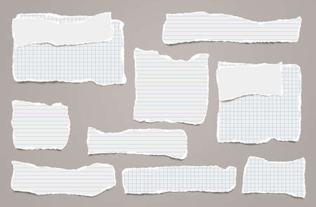 Set of torn white lined note, notebook paper strips and pieces stuck on light brown background. Vector illustration.