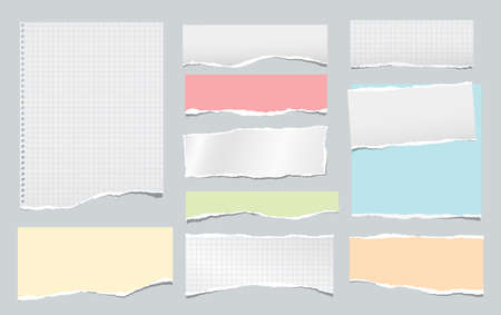 Torn white squared and colorful note, notebook paper strips, pieces stuck on grey background. Vector illustration