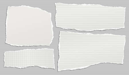 Torn of white lined, math note, notebook paper strips, pieces stuck on grey lined background. Vector illustration