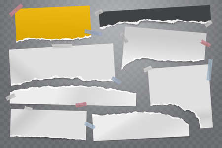 Torn of white and colorful note, notebook paper strips and pieces stuck with sticky tape on grey squared background. Vector illustration