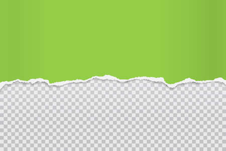Piece of torn and horizontal green paper with soft shadow is on squared background for text. Vector illustration
