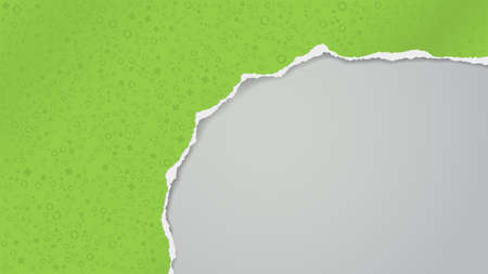 Torn of green paper with different shapes pattern is on white transparent background for text, advertising or design. Vector illustration
