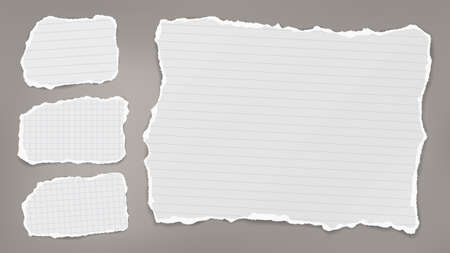 Torn of white note, notebook paper strips and pieces stuck on grey background. Vector illustration