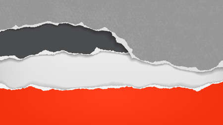 Pieces of torn, ripped red, black and grey paper with soft shadow are on white background for text. Vector illustration