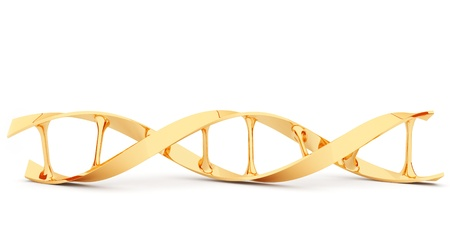 dna structure: Gold DNA. 3d illustration, isolated on white background Stock Photo