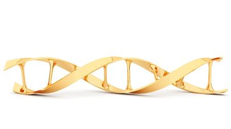 evolucion: Oro ADN. 3d ilustración, aisladas sobre fondo blanco Foto de archivo