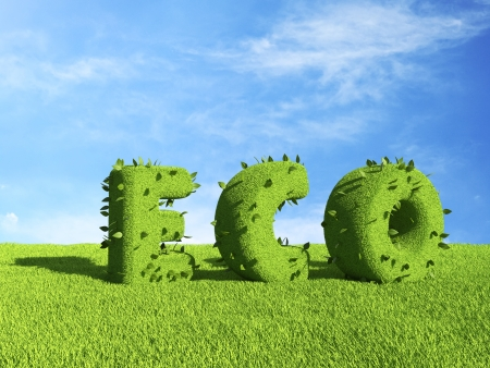 ECO text  on grass field. Ecology concept 3D photo