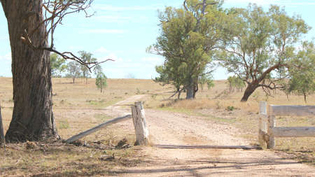 cattle grid: Outback Australian sheep farm driveway entrance from front with cattle grid gate