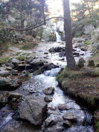 preserves: Stream in Preserves. Madrids community. spain Stock Photo