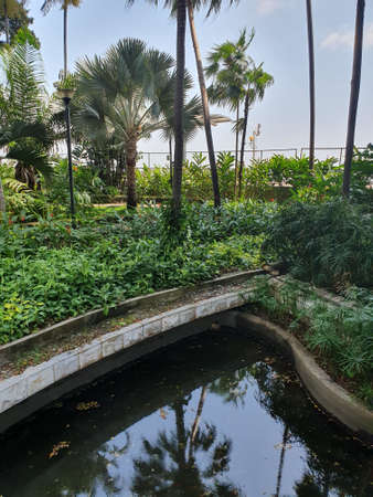 Gardens of the Malecon in Guayaquil, Ecuador. Guayas River.