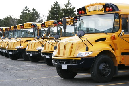 line of yellow school buses ready to go