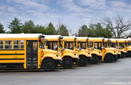lijn van gele schoolbussen klaar voor gebruik Stockfoto