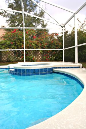Backyard Swimming Pool with Hot Tub Imagens