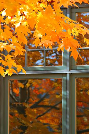 Autumn Color Reflection on the Window Stock Photo - 3212312