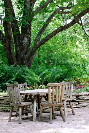 Cafeteria Tables under Big Tree Stock Photo - 3268101