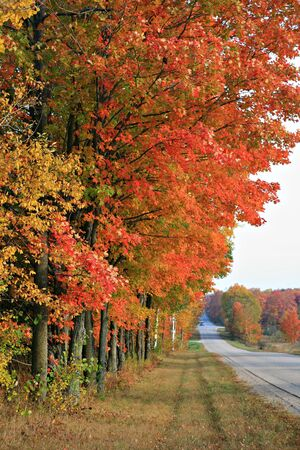 Colorful Countryside Senic Drvie  in Autumn Stock Photo - 3698280