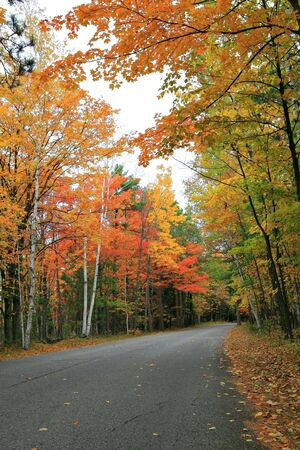 Colorful Autumn Scenic Road Stock Photo - 3698300