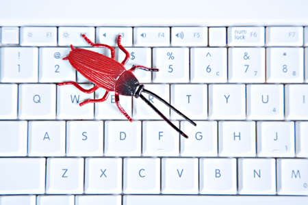 Red Bug on Computer Keyboard Closeup Stock Photo - 10764295