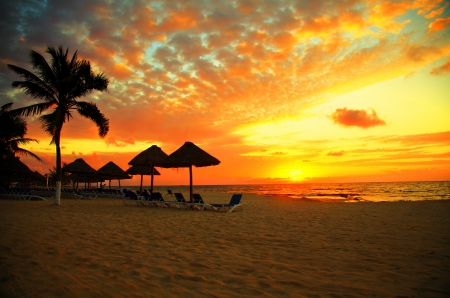 coucher de soleil: Sc�ne Sunset Beach Resort � Silhouette tropicale
