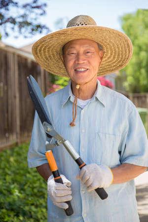 asian gardening: Senior Asian Gardener Working in Garden Holding Cutter in Summer Stock Photo
