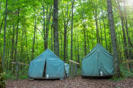 Wall Style Camping Tents at Rustic Campground during Daytime in Woods Imagens - 21534657