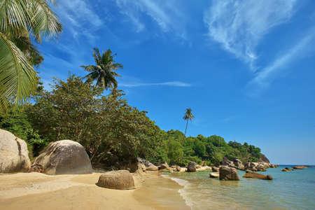 Palms on the beach, Ko Samui island, Thailand Stock Photo