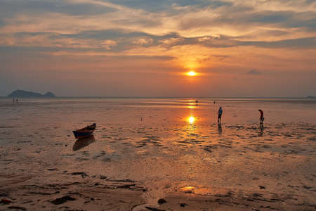 ebb: people collect shells after ebb in the ocean sunset