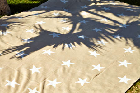 beach towel: Beach towel in the shade of palm trees on the beach.