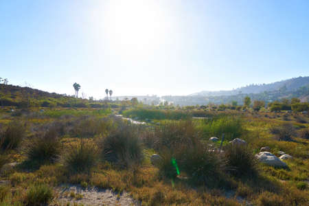 salix alba: Beautiful pond in Malibu at sunset. The hills in the background Stock Photo