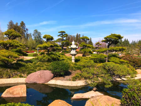 Beautiful flowers and trees in Japanese Garden