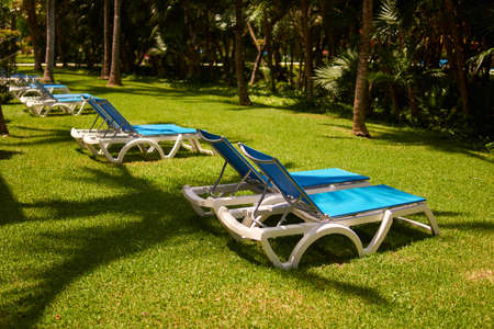 Sunbeds on green grass waiting for tourists. View at luxury resort hotel of tropical coast. Shadows from leaves of coconut palms. Caribbean Sea. Riviera Maya Mexico.