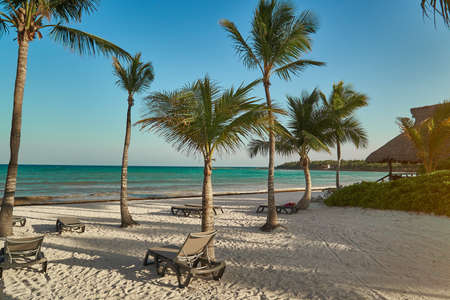 View at beach of tropical coast. Leaves of coconut palms fluttering in wind against blue sky. Turquoise water of Caribbean Sea. Riviera Maya Mexico Imagens