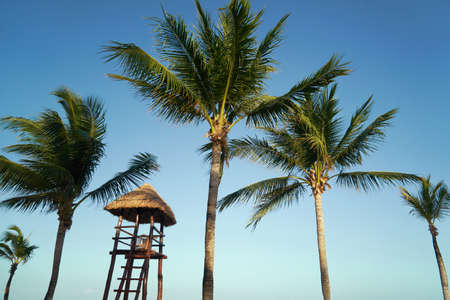 View at luxury resort hotel beach of tropical coast. Place of lifeguard. Leaves of coconut palms fluttering in wind against blue sky. Turquoise water of Caribbean Sea. Riviera Maya Mexico.
