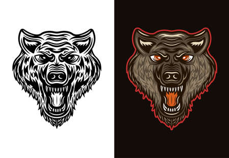 Angry wolf head in two styles black on white and colorful on dark background vector illustration Illustration