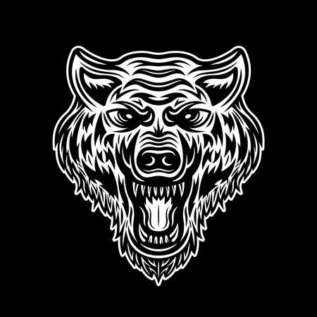 Angry wolf head vector illustration isolated on dark background Illustration