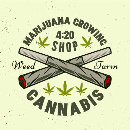 Two crossed weed joints vector emblem, badge, label for marijuana growing company. Illustration in colorful style isolated on light background