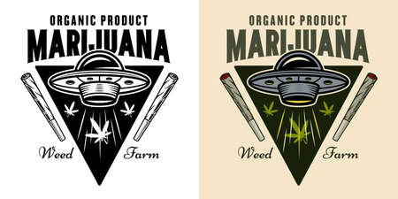 Cannabis growing vector emblem, badge, label with ufo stealing marijuana leaves illustration in two styles black on white and colorful Çizim