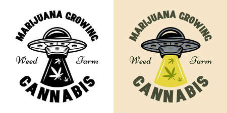 Cannabis growing vector emblem, badge, label   with ufo stealing marijuana leaves illustration in two styles black on white and colorful