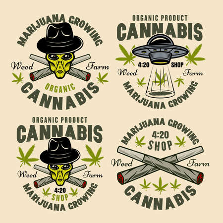 Marijuana growing set of four vector emblems, badges, labels or logos. Illustration in colorful style isolated on light background