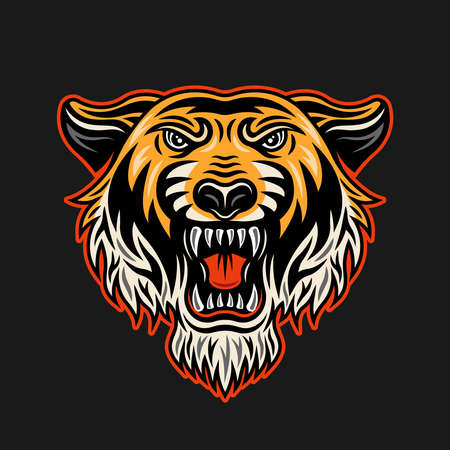 Tiger head vector illustration in vintage colored style isolated on dark background 向量圖像