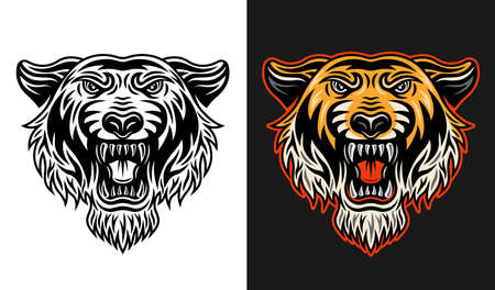 Tiger head front view two styles black on white and colorful on dark background vector illustration