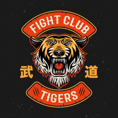 Tiger fight club, martial arts vector colorful emblem, badge,  patch, label isolated on dark background 向量圖像