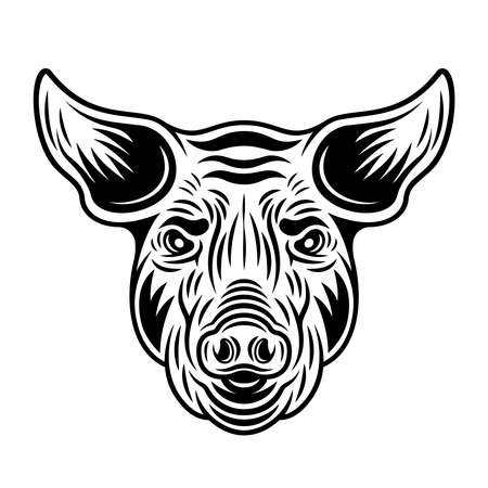 Pig head front view vector monochrome illustration in vintage style isolated on white background Illusztráció