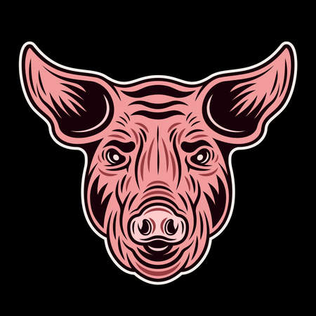 Pig pink head front view vector colorful illustration isolated on dark background