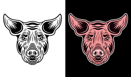 Pig head in two styles monochrome on white and colorful on dark background vector illustration Ilustração