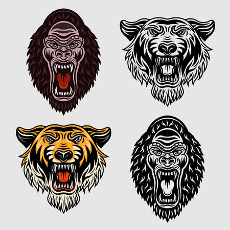 Animals set of vector objects in two styles colored and black and white. Tiger head and gorilla cartoon characters Illustration
