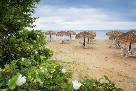Summer vacation destination. Straw umbrellas and sunbeds on the empty pebble beach with sea in the background. Vacation And Tourism Concept. Sunbeds On The Paradise Beach. Summer in Bulgaria.