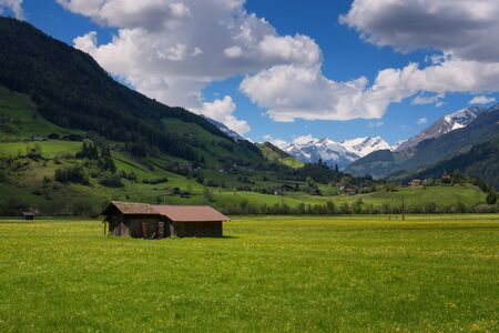 Idyllic landscape in the Alps in springtime with traditional mountain chalet and fresh green mountain pastures with blooming flowers on a beautiful sunny day. Austria, Europe.
